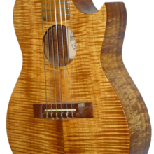Island Strings Guitar.