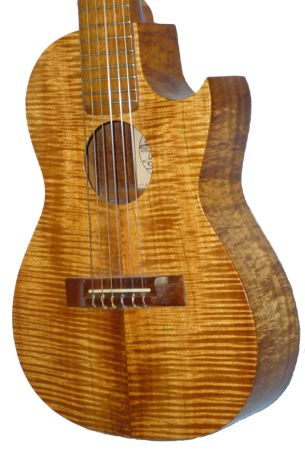 Island Strings Guitar.