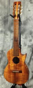 island_strings_guitar