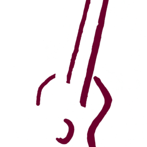 line drawing of a ukulele