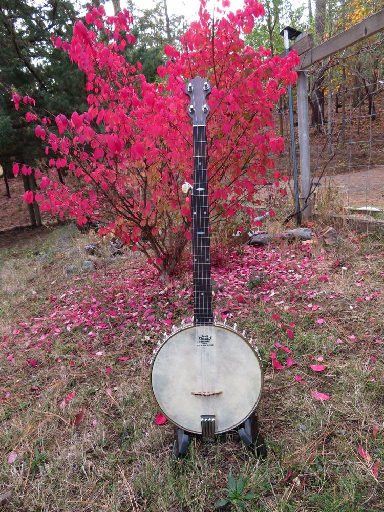 Franken-Banjo